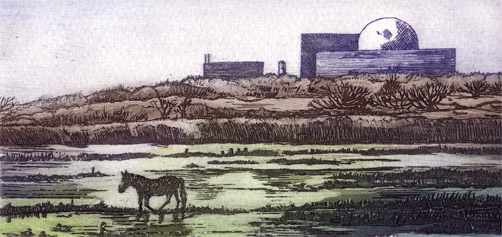 Minsmere And Sizewell Etchings By Joan Hodgkiss